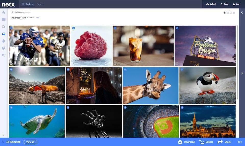 NetX Digital Asset Management screenshot